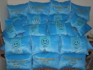 Pembuatan Boneka Maskot Wisuda SD IT Lukman Al Hakim