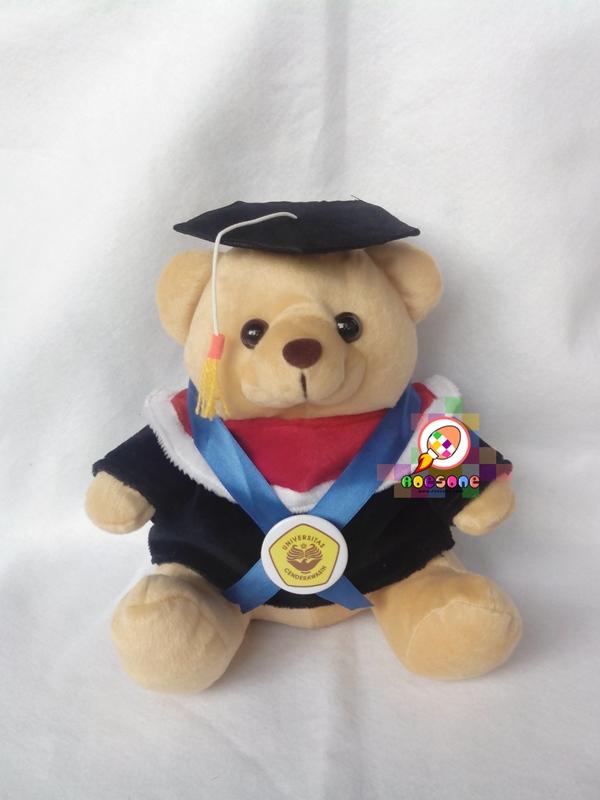 Boneka Wisuda Universitas Cenderawasih