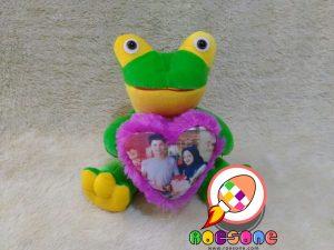 Paket Boneka Turtle dan Bantal Love Foto Kekinian
