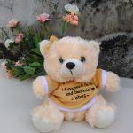 Produsen Boneka Teddy Bear Custom Murah di Jogja
